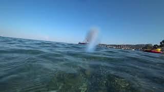 Турция Немного моря и болтологии отель PALMET BEACH RESORT 5 пляж море