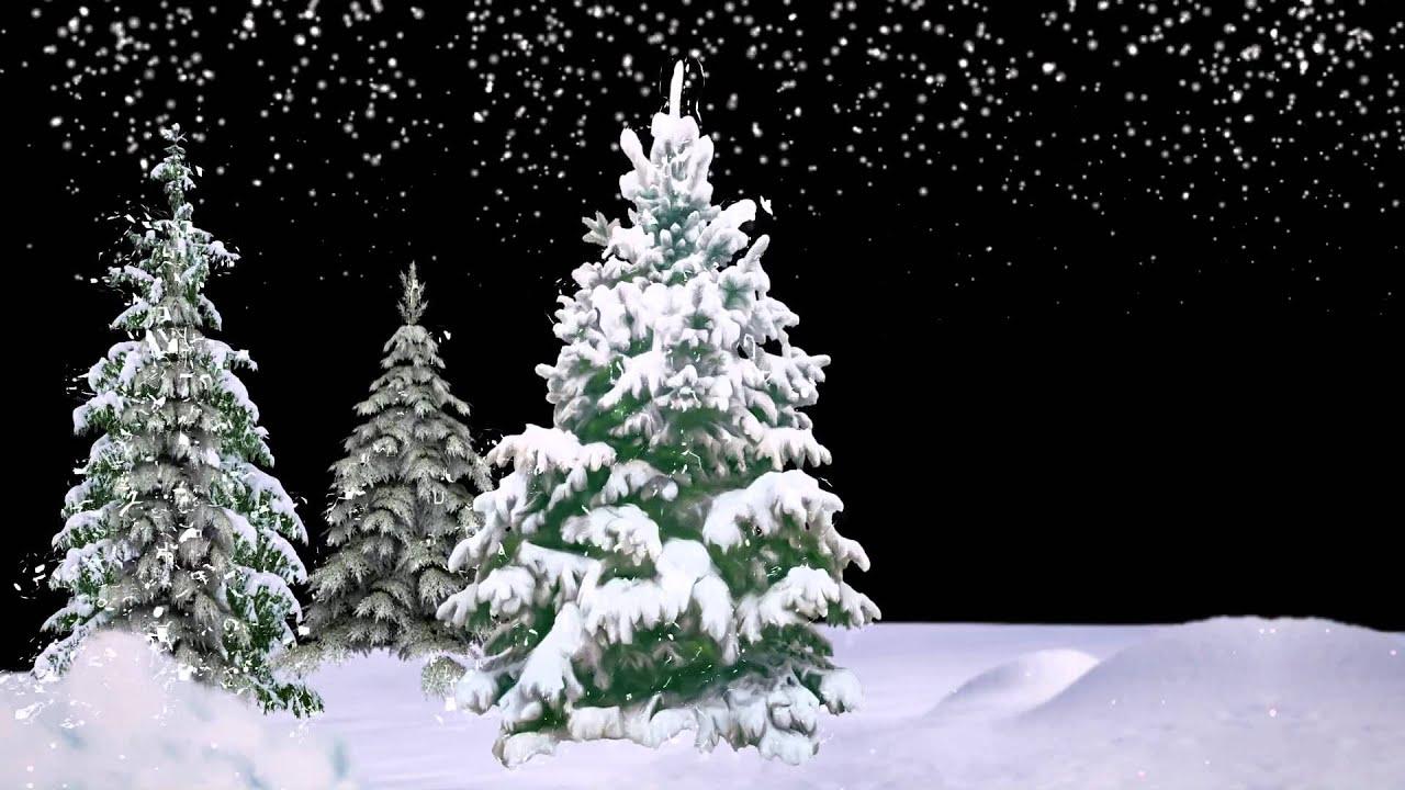 знай, футаж новогодняя елка анимация качественные