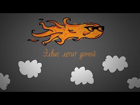 The Dartz - Элвис летит домой (lyrics video)