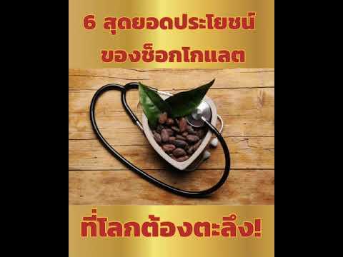 🍫 6 สุดยอดประโยชน์ของช็อกโกแลต ที่โลกต้องตลึง 🍫
