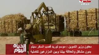 فيديو.. «التموين»: إعطاء مزارعي قصب السكر مستحقاتهم دون تأخير
