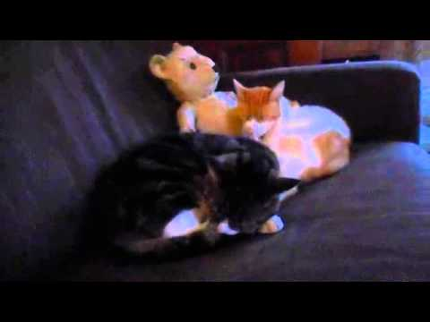 Gilbert and George Chilling to Raymond Scott