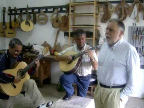 guitarra Portuguesa Flor de Lis, bairro alto e seus amores ...