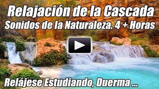 Relajación Cataratas Naturaleza Sonidos Relax Estudio Meditación Sueño Relajante Agua Estudiando