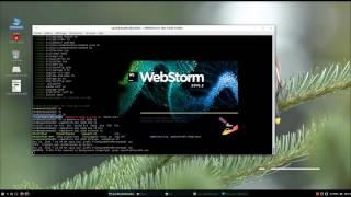 hello world angular docker npm webstorm