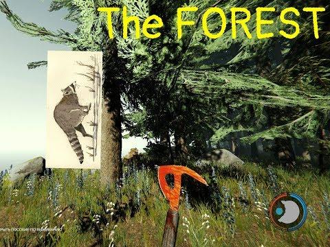 ГДЕ ЕНОТ ? THE FOREST. В ПОИСКАХ ЕНОТА