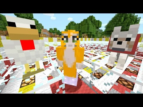 Minecraft Xbox - Pesky Perry [353]