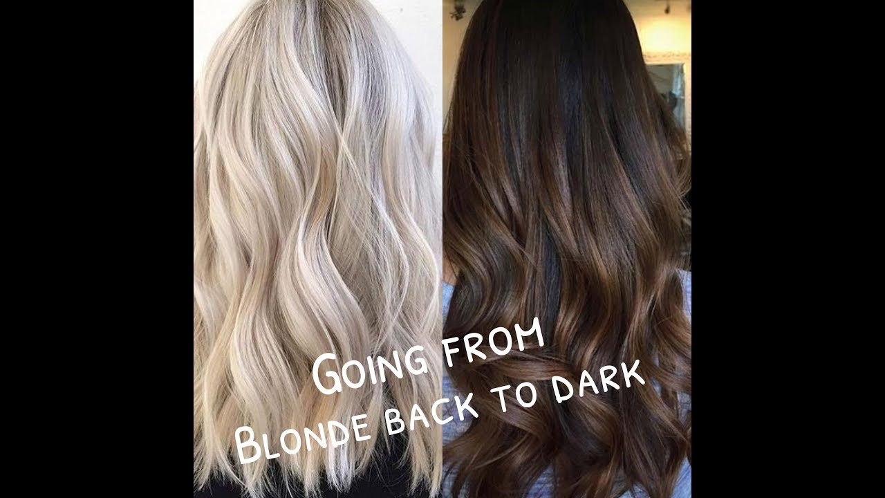 Advice on dying your hair from Blonde back to Dark