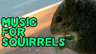 Music for Squirrels