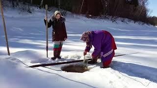 Ханты. Рыбалка, женщины знают своё дело. Часть №1
