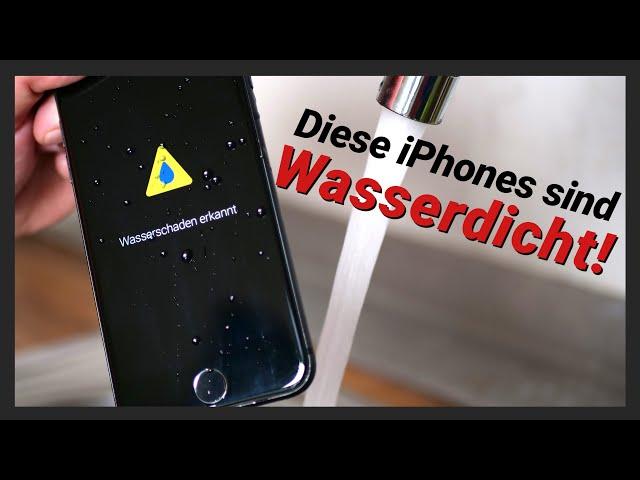 Welche iPhones sind Wasserdicht? Wasserschaden erkennen & Reparieren