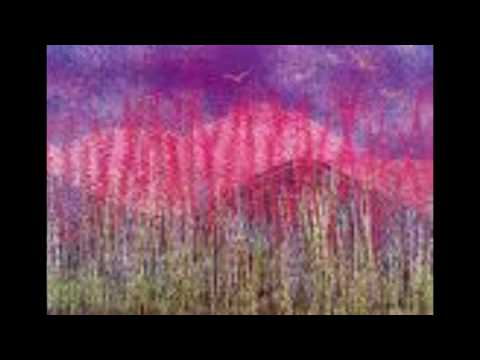 Dj_S3nzor-Purple Hills 2010 part 2.avi