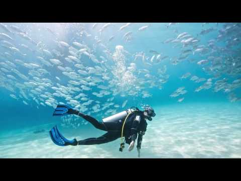 Learn To Dive Lessons in Sydney, Australia