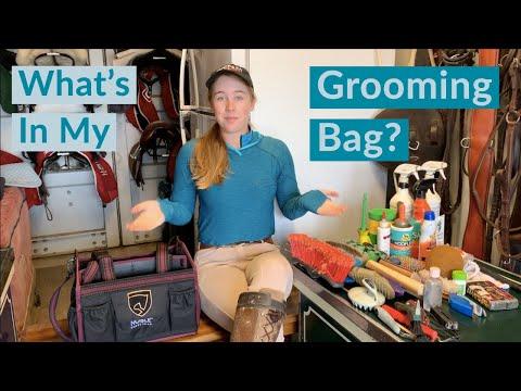 horse grooming tools
