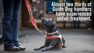 International Guide Dog Day 2015