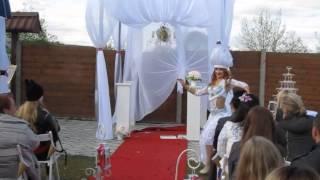 Танцевальное шоу на свадьбу  Алена Арсентьева , г  Бобруйск