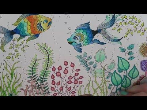 Secret Garden Coloring Book | Fish