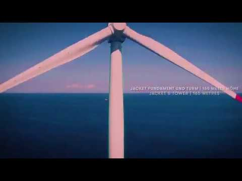 Our parent company Iberdrola inaugurated the Wikinger offshore wind farm in Germany