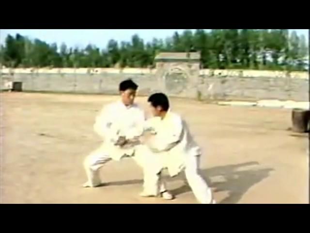 Taiji (Taichi) style Chen - Tuishou Chen Xiao Wang et Chen Zheng Lei à Chenjiagou