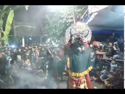 Samboyo putro lagu cinta tak terbatas waktu live kertosono