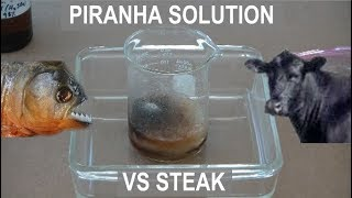 Piranha Solution vs Steak - ElementalMaker