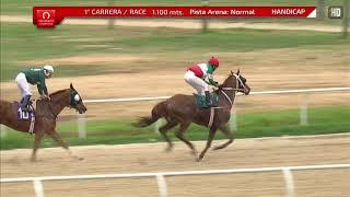 Vidéo de la course PMU PREMIO GABRIELA MISTARL