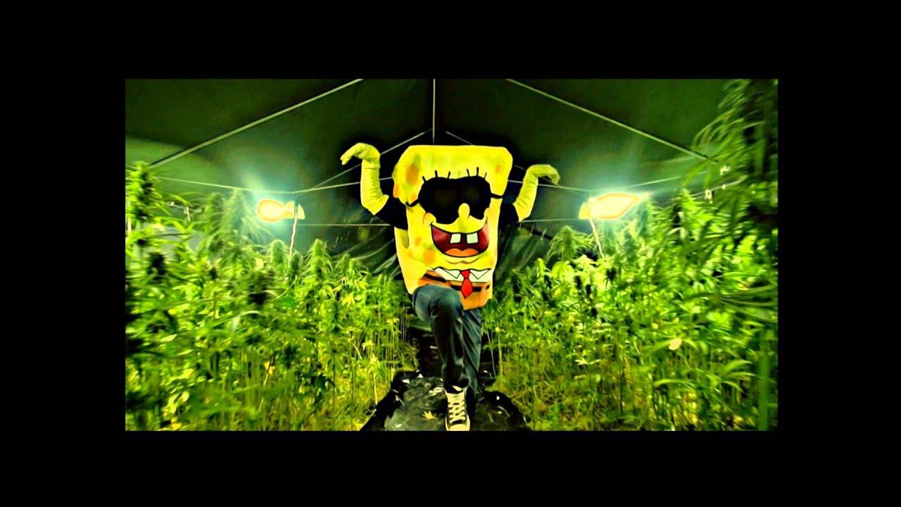spongebozz planktonweed album