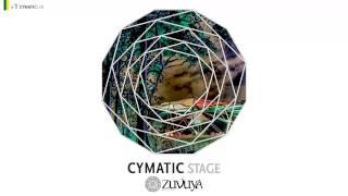 06. Reborn Soul - Mysterious Place [VA - 2013 - Cymatic Stage #01 (Zuvuya Festival)] by CYMATIC LAB