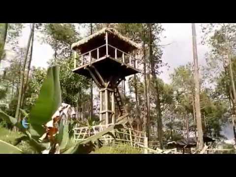 Hutan Wisata Wonoasri Seper Balepanjang Jatipurno Kabupaten