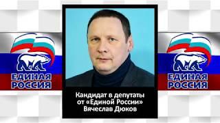 Кандидат в депутаты от «Единой России» назвал своих однопартийцев ворами
