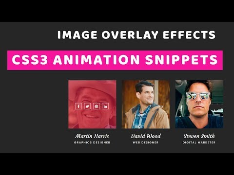 CSS3 Image Overlay Effect   Image Overlay Hover Effect With CSS