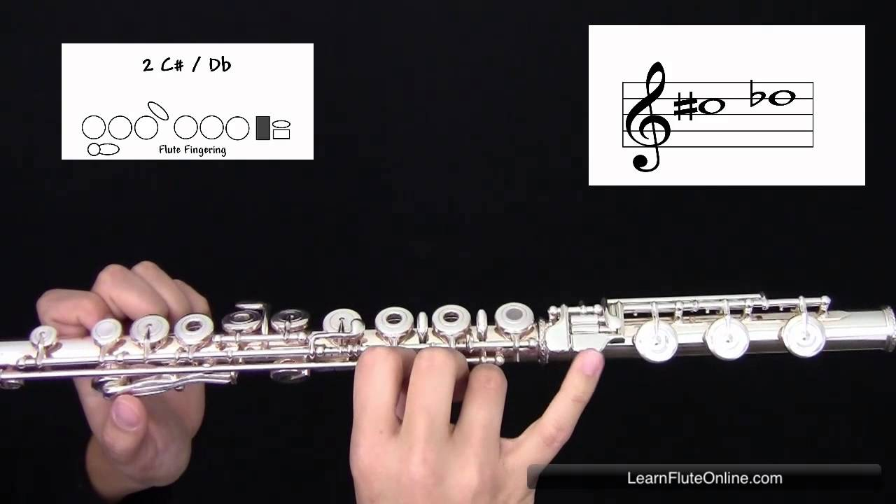 How To Play The Note C sharp D flat C#/Db on Flute: Learn Flute Online