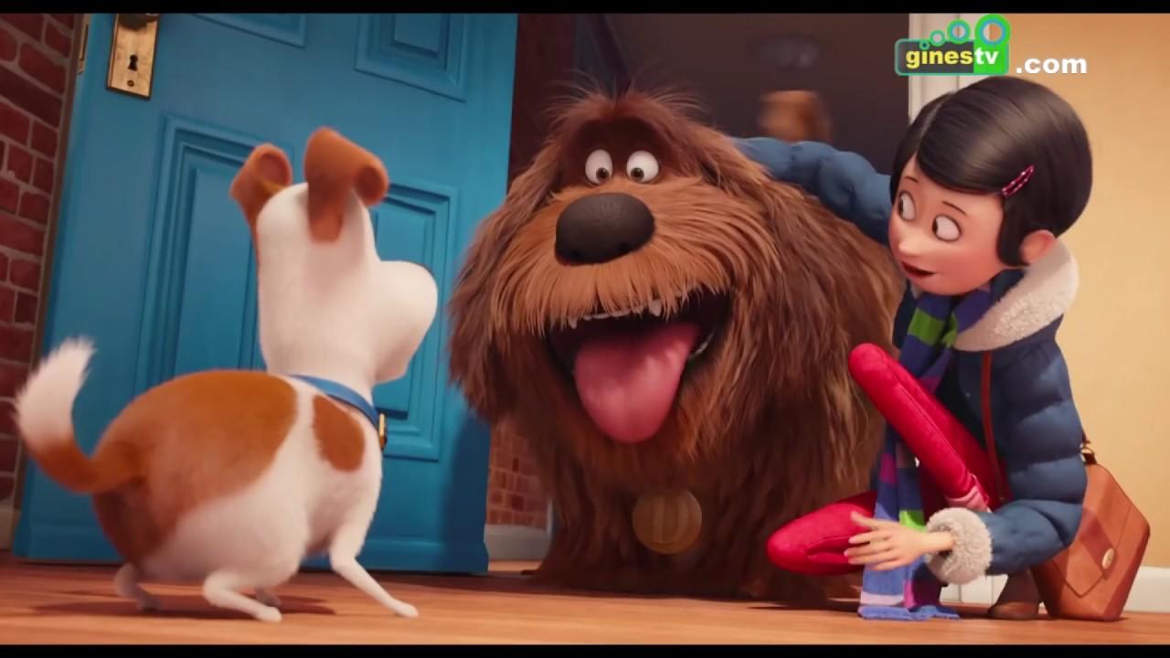 """Llega """"Miércoles de cine"""" con conocidas películas de animación para el disfrute de toda la familia"""