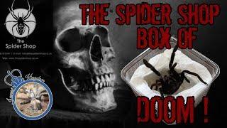 The Spider Shop Box of Doom