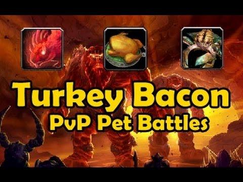 Turkey Bacon Hamlet - PvP Pet Battles