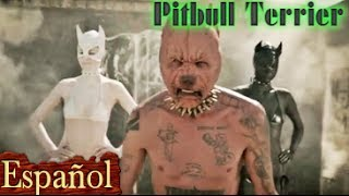 Pitbull Terrier - Die Antwoord - Español Subtitulado!!! (LETRA TRADUCIDA) Español traduccion