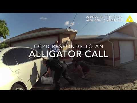 Jim Show - Cops Scared Of A Small Gator?!?