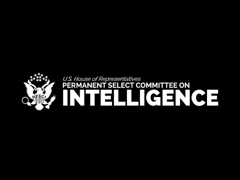 Virtual Open Hearing on Misinformation and Conspiracy Theories Online
