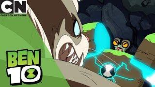Ben 10 | What's Under the Blanket | Cartoon Network