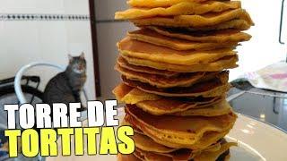 HAGO UNA TORRE DE TORTITAS CON LOS NUEVOS GATOS