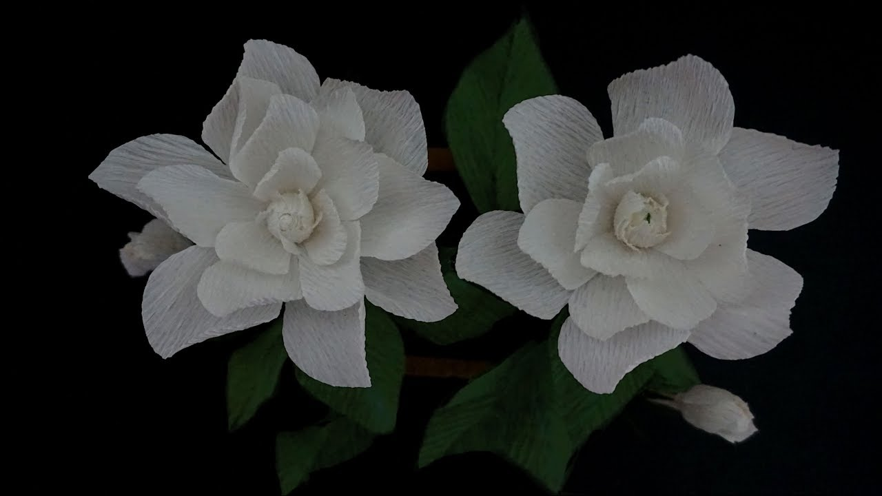 How to make paper flowers crepe white gardenia flower gift items how to make paper flowers crepe white gardenia flower gift items mightylinksfo