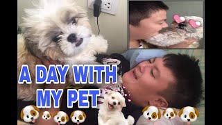 A DAY WITH MY PET SHADOW   #NoToAnimalCruelty