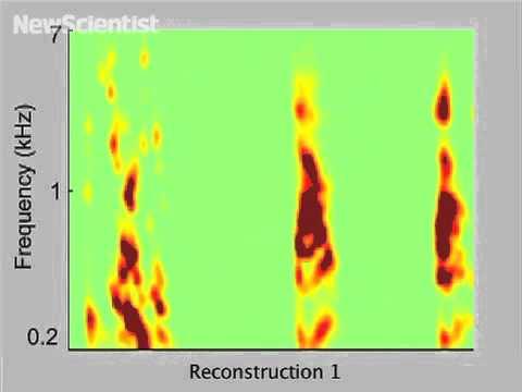 Telepathy machine reconstructs speech from brainwaves