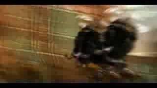 Aukka - Para Que? YouTube Videos
