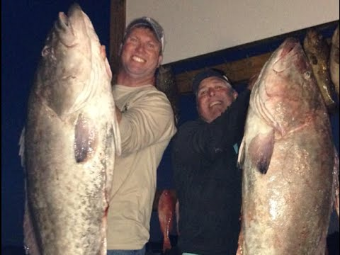 Gulf Coast's Sportsman Seminar Series: Bottom Fishing (Amberjack, Grouper, Snapper)