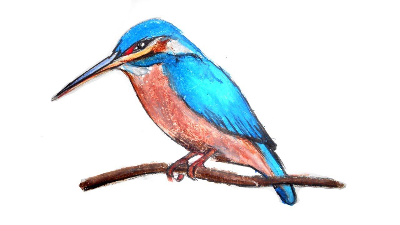 How To Draw Kingfisher For Kids ম ছর ঙ আ ক র সহজ