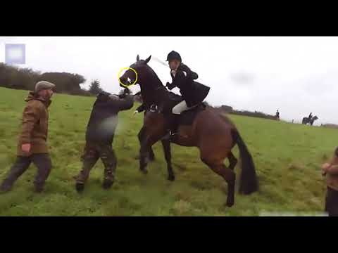 Woman Uses Horse To Charge People - Horse Is Confused, Hurt & Scared