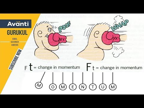 Class 9 Science - Physics - Momentum