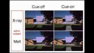 Evaluating Depth Perception in Outdoor Mixed Reality Environment (VRST 2010)