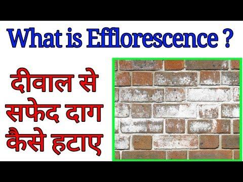 what is Efflorescence। दीवाल से सफ़ेद दाग कैसे हटाये